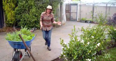 Gardening Australia 29-19
