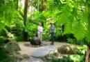 Gardening Australia 32-8